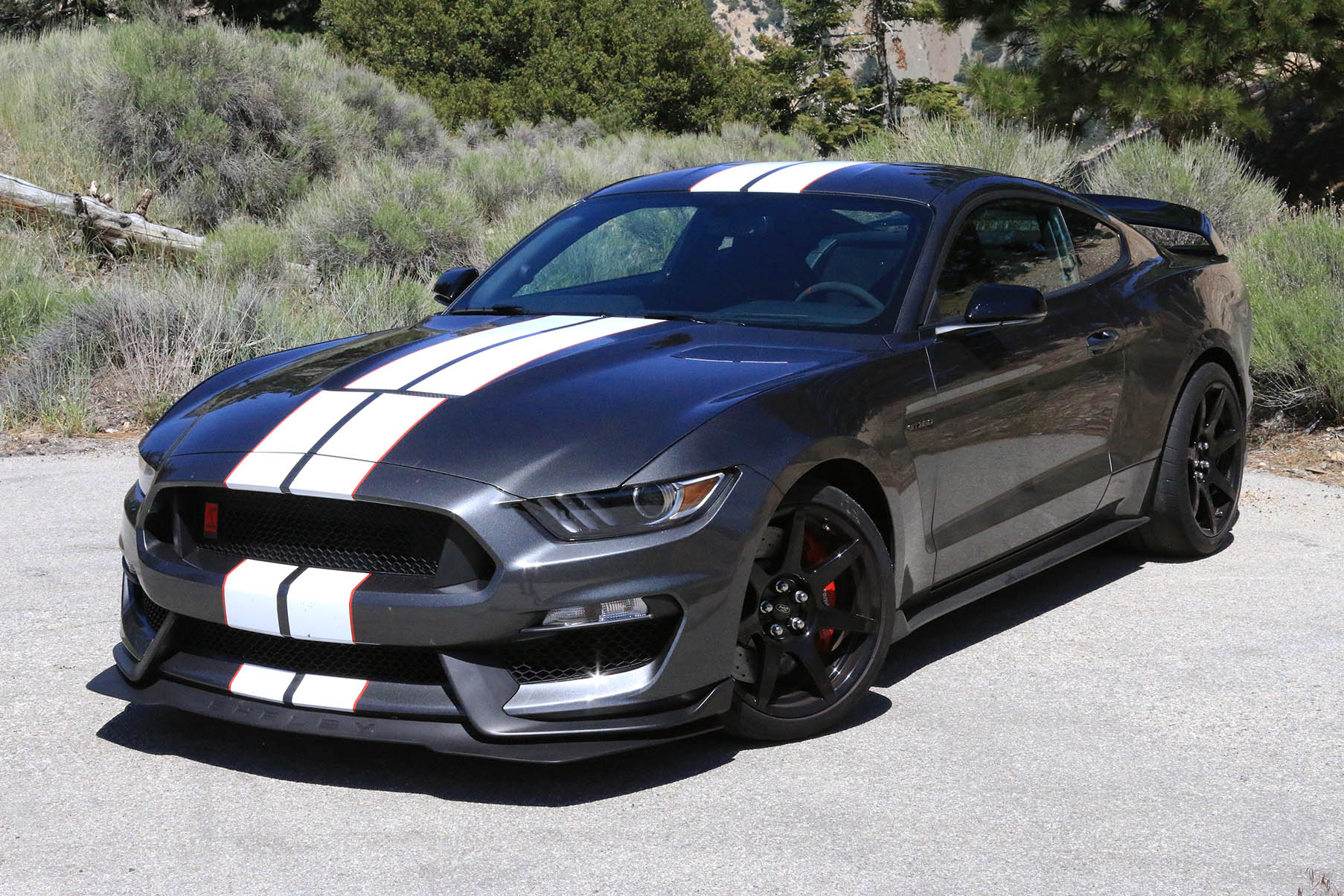 2016 ford mustang shelby gt350r first drive. Black Bedroom Furniture Sets. Home Design Ideas