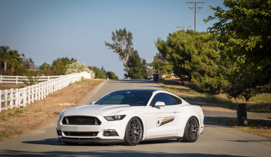 Pedders Coilovers Has This Mustang Clawing At The Road