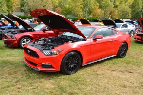 mustangs-invade-maggie-valley-the-44th-annual-mustangshelby-show-0351