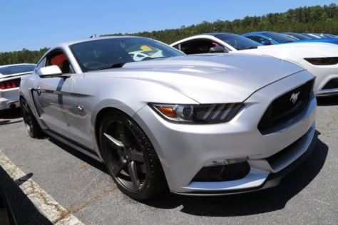 Mustangs-at-the-Mountain-2017-707
